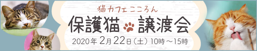 バナーデザイン 猫カフェ 譲渡会